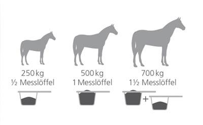 Maßangaben Futterkohle Pferd