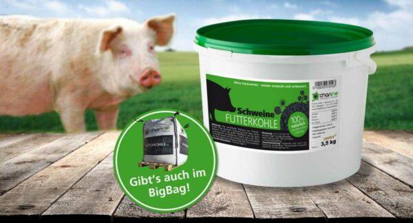 Schweine-Futterkohle 3,5 kg